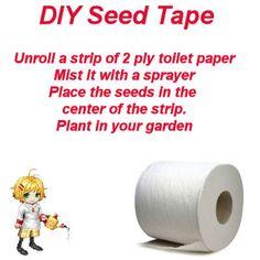 Seed Starting Success :: Jeanne Grunert's clipboard on Hometalk :: Hometalk