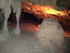 Florida Caverns State Park located in Marianna, FL