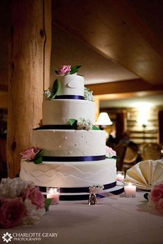 Large Mountain Theme elegant cake.  Would still look amazing as a 3 tier and a little smaller but still round