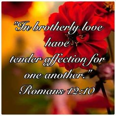 They will know us by our love for one another