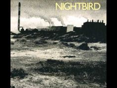 PAUL CARRACK Nightbird B