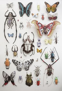 Artistic Moods faux entymology , taxidermy scientific specimen style textile art fabric bugs and butterflies