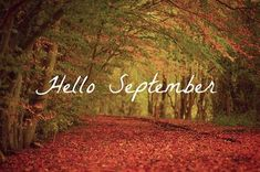 fall images and pictures - fall category Welcome September Images, Hello September Images, September Pictures, Hello July, Happy September, September Quotes, Fall Images, Fall Pictures, Nature Images
