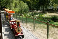 Parc Merveilleux in Luxembourg - one of my all time favorite family outings!