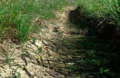 EPA under fire for social media 'PR campaign' pushing water regs - http://www.foxnews.com/politics/2015/05/26/epa-under-fire-for-social-media-pr-campaign-pushing-water-regs/