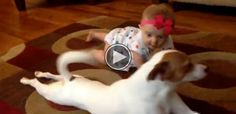 Our Dog Is Teaching Our Baby How To Crawl.