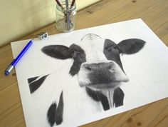 Cow. Limited Edition Giclee Print