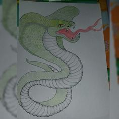 Disegnando serpenti  Drawing snakes #snakes #draw #colour