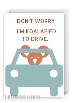 I'm Koalafied. Driving Humor, Funny Driving, Funny Birthday Cards, Boy Birthday, Passed Driving Test, Graduation Greetings, British Humor, Funny Greeting Cards, Boyfriend Goals
