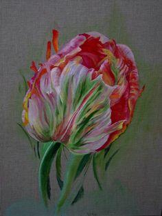 French tulip. Oil on board by Sheila Robinson. facebook.com/sheilarobinsonart
