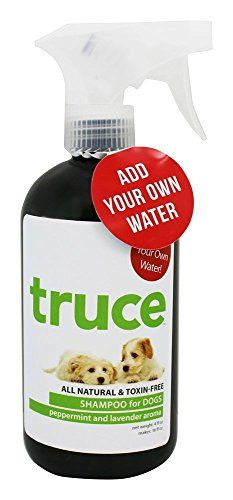 Truce Dog Shampoo, Peppermint and Lavender >>> Want additional info? Click on the image.