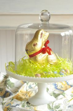 east easter decor, bunny under glass