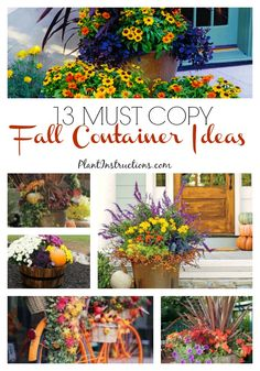 Fall is right around for the corner and for those that love fall foliage, plants, and flowers, these 13 fall container ideas will be right up your alley! Fall Flower Pots, Fall Flowers, Container Flowers, Container Plants, Outside Fall Decorations, Fall Planters, Autumn Planter Ideas, Garden Planters, Fall Containers