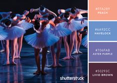 101 Color Combinations to Inspire Your Next Design – Bold Ballerinas Color Palette