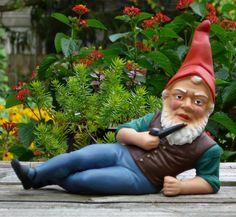 Some of the neurotic Community Garden Neighbors we've all met!