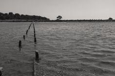 esteiros do rio Sado, Bonita