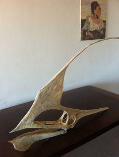 Tupandactylus | Category Archives: Pterosaur #3: Tupandactylus
