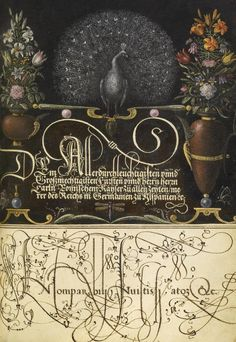 Joris Hoefnagel (illuminator)  [Flemish / Hungarian, 1542 - 1600], and Georg Bocskay (scribe)  [Hungarian, died 1575],                  		            Flower Arrangements, Peacock, Butterflies, and Insect,                      		        Flemish and Hungarian, 1561 - 1562