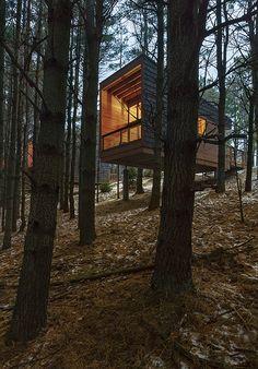whitetail woods camper cabins ~ hga