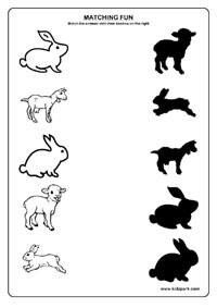 Shadow Fun Worksheets , Activity Sheets for kids, Funs Worksheets 3 Year Old Preschool, 3 Year Old Activities, Printable Activities For Kids, Toddler Learning Activities, Montessori Activities, Free Preschool, Free Printables, Animal Worksheets, Kindergarten Worksheets