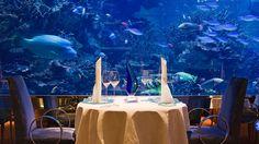 Undersea dining at Burj Al Arab, Dubai.