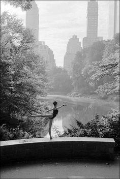 Ballet in new york  ~by danying.li
