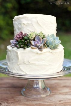 Basic wedding cake adorned with lush succulents. Simple but oh so lovely.