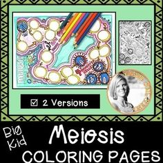 Big Kid Coloring Pages for Biology!  Two designs cover Meiosis: Gamete production, Diploid & Haploid Cells, Increased Variation due to Crossing Over and Independent Assortment. These are great for reinforcement, anchor activity, sub plan supplement, review, or after a test.