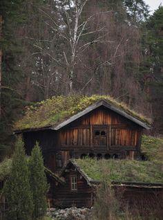 "katarina-von-abyss: "" skuggulv: Folk Museum Oslo by Alastair Heslop"""