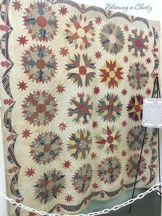 www.bloominginchintz.blogspot.com