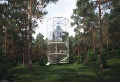 Three-storey glass tree house is just magnificent:)