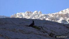 natural sound Chakra Balancing, Geometric Patterns, Meditation Musik, Virtual Reality, Mount Everest, Mountains, Nature, Travel, Outdoor