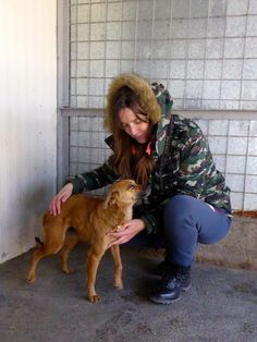 How Homeless Friends Embrace Eachother...Please read this beautiful story told through the eyes of a grateful rescue dog.