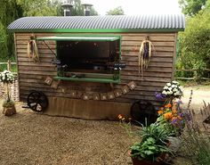 Sussex Lamb served from a Shepherds Hut. Great catering company for events, parties and weddings. All home reared lambs from Sussex Blackdown Shepherd Huts, Shepherds Hut, The Shepherd, Catering Companies, Lambs, Great Places, Parties, Base, Events