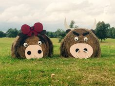 Cow herd hay balesYou can find Hay bales and more on our website.Cow herd hay balesYou can find Hay and more on our website.Cow herd h. Hay Bales, Straw Bales, Open Farm Day, Hay Bale Decorations, Fall Yard Decor, Fall Festival Games, Farm Art, Church Crafts, Happy Fall Y'all