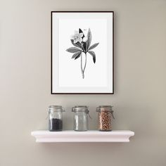 New to WallCandyPrintables on Etsy: Kitchen Printable Botanical Print Botanical Art Flower Print Home Decor Printable Art Digital Download Black White Print Wall Decor (5.00 USD)