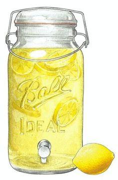 keepcalmmcarryon Mason Jar Crafts, Mason Jars, Gooseberry Patch, Summer Clipart, Ball Jars, Food Drawing, Drawing Ideas, Canning Jars, Shades Of Yellow