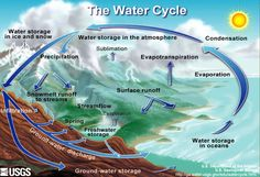 This is our water cycle and what you may notice is that we don't get new water. Our same old water continually recycles itself.