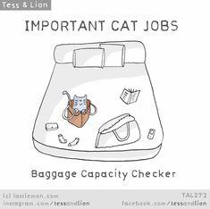 Important Jobs Cats Do Every Day - Süße Katzen 2020 Crazy Cat Lady, Crazy Cats, I Love Cats, Cool Cats, Lion Cat, Cat Jokes, What Cat, Cat Comics, Cat People