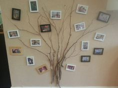 Bruce Toddler Family Tree meets wall art