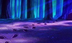 Disney Aesthetic, Woods, Laughter, Northern Lights, Entertainment, Nature, Travel, Naturaleza, Viajes