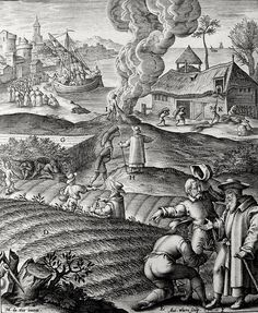 Phillip Medhurst presents Bowyer Bible print 3667 The parable of the wheat and the tares Matthew 13:24-30 De Vos on Flickr. A print from the Bowyer Bible, a grangerised copy of Macklin's Bible in Bolton Museum and Archives, England.