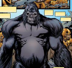 Gorila Grodd.