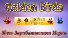 Golden Birds - Зарабатывай на своих яйцах !!! Стратегия заработка на проекте + таблица доходов! Регистрация по сылке: http://goldenbirds.ru/?i=364132