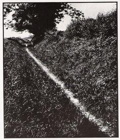 Bill Brandt, Pilgrim's Way, Kent, 1950.
