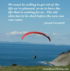 We must be willing to get rid of the life we've planned,  so as to have the life that is waiting for us.  The old skin has to be shed before the new one can come.  - Joseph Campbell