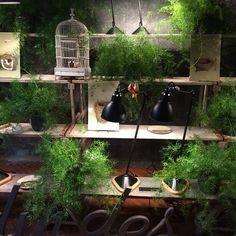 Pelas ruas de Milão, produções e mais produções #floor #flowerpower #fashionstyle #fabiogaleazzo #milan #milao #milano #milan2015 #milao2015 #milano2015 #Milandesignweek2015 #MilanDesignWeek #milano2015 #galeazzodesign #natural #garden #vitrines
