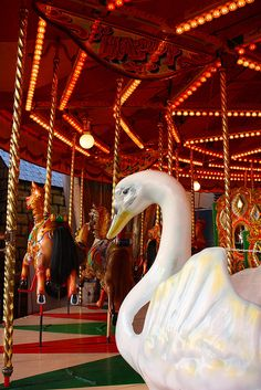 "Carousel Swan……THE OLDER FOLKS WOULD SIT DOWN IN THE SWAN AND REMEMBER THE TIMES THEY RODE THE ""WILD HORSES""………..ccp"