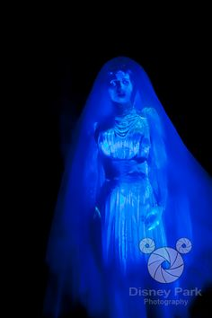 Here is the attic bride from the Haunted Mansion at Walt Disney World