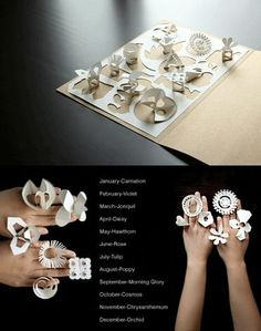Anillos de papel   Orquídeas